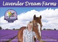 Lavender Dream Farms