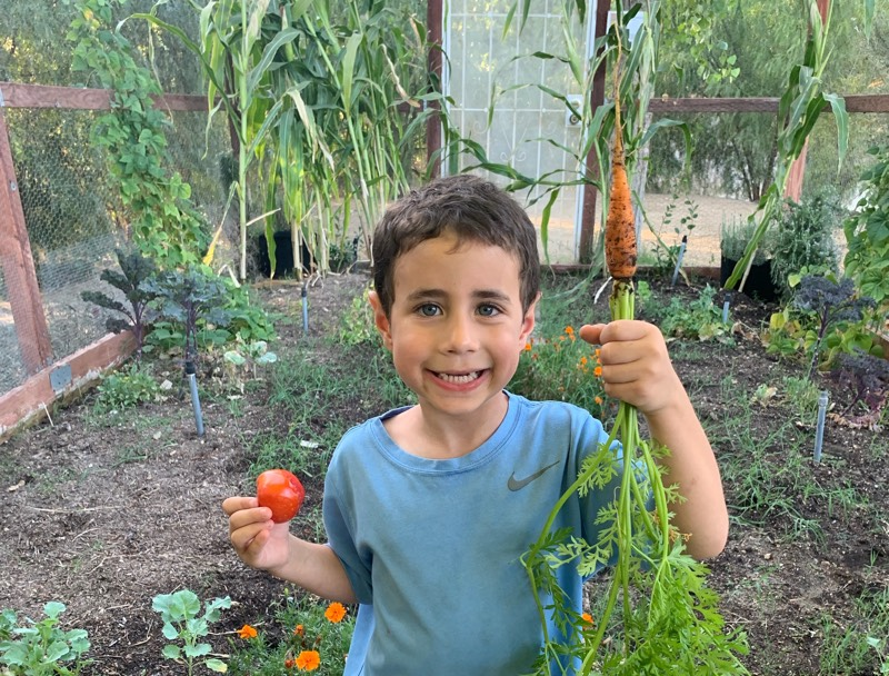 Boy In Gentle Barn Garden with Vegetables